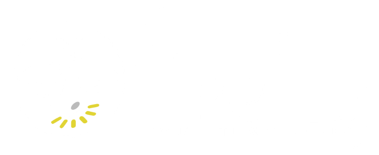 Firefly Consulting Services Logo